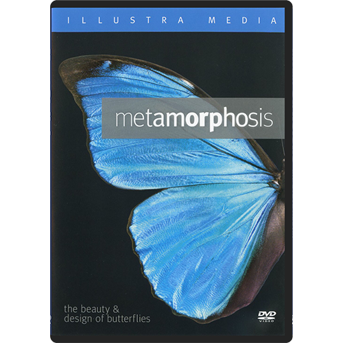 Metamorphosis: The Beauty & Design of Butterflies DVD