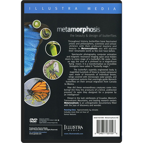 Metamorphosis: The Beauty & Design of Butterflies DVD back