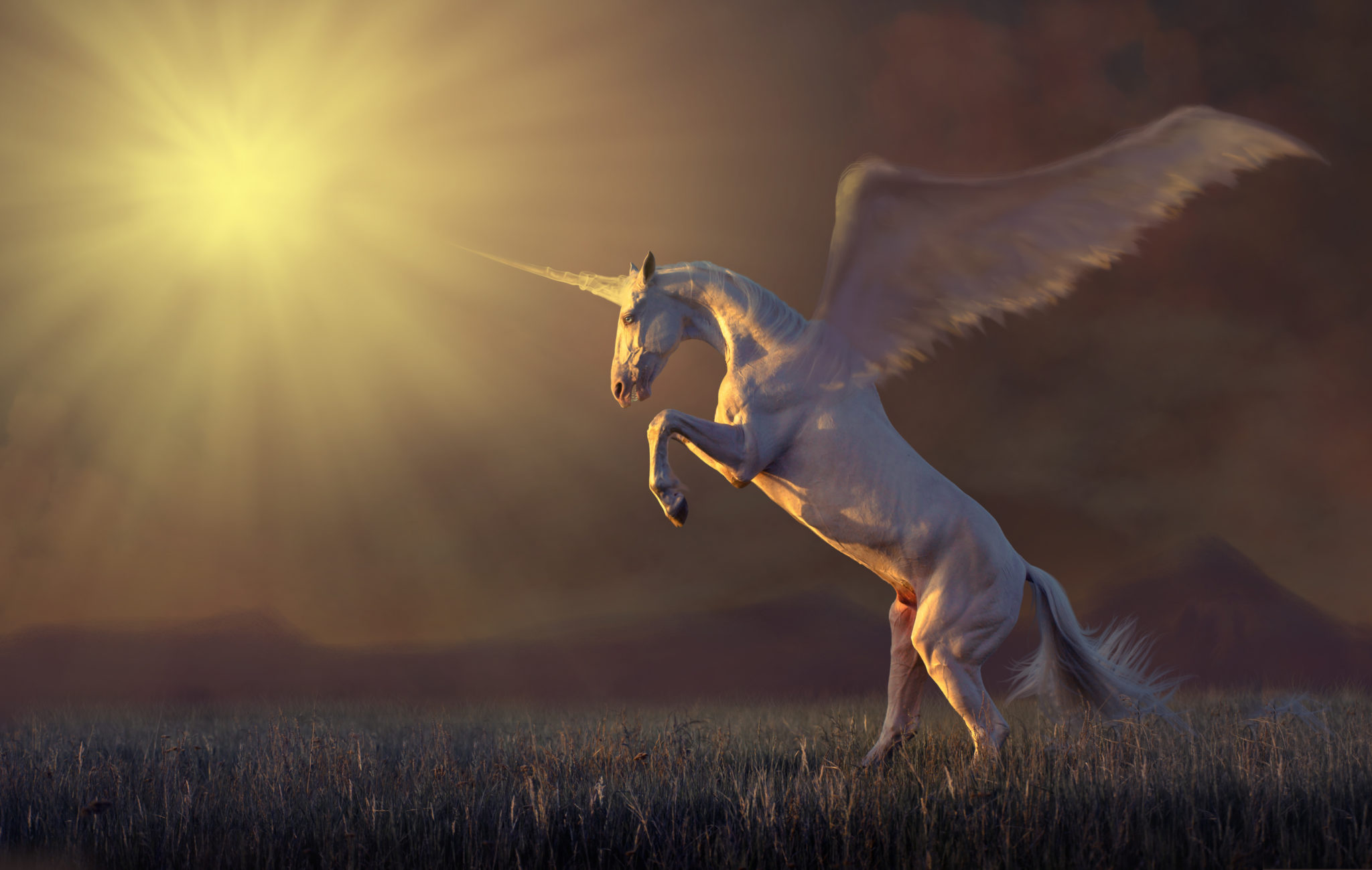 Mythical Unicorns In The Bible