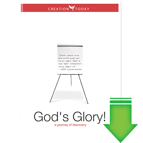 God's Glory - A Journey of Discovery (Video Download)  by Creation Today