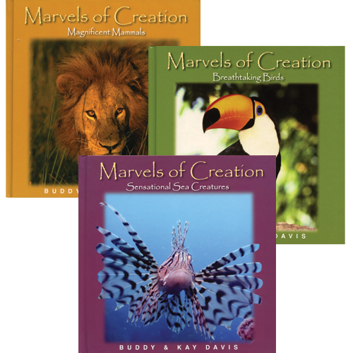 Marvels of Creation Package
