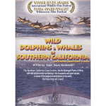 Wild Dolphins & Whales of Southern California