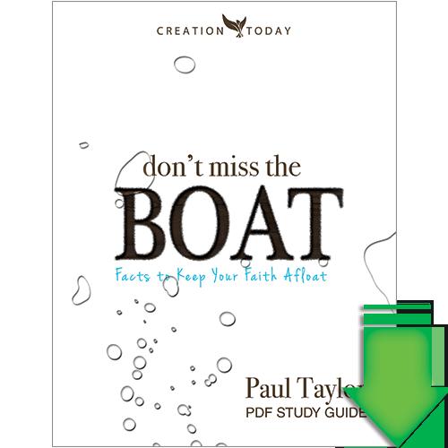 Boat Trailer Bunks & Boat Trailer Guide-Ons - Cabela's