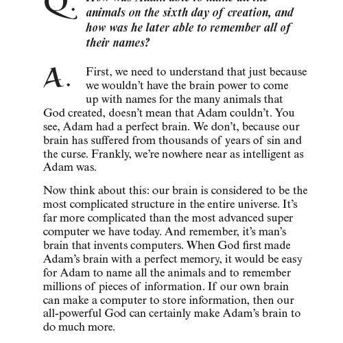 Did Adam Have a Bellybutton? eBook (EPUB, MOBI, PDF)