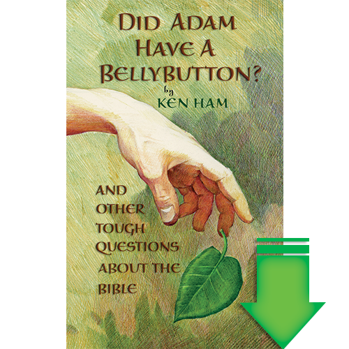Did Adam Have a Bellybutton? eBook (EPUB, MOBI, PDF)