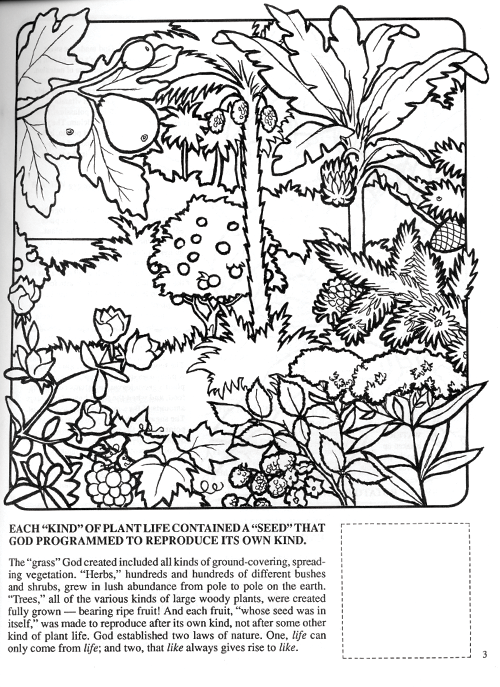 Free coloring pages of god created the world for Coloring pages god created the world