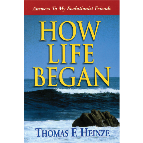 How Life Began (Answers To My Evolutionist Friends)
