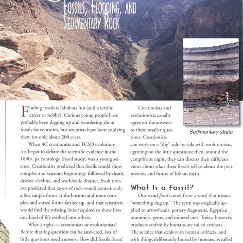 The Fossil Book eBook (PDF)