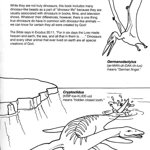 The Wonders Of Gods World Dinosaur Activity Book