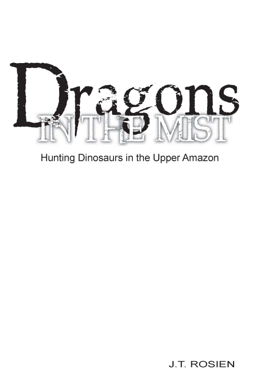 Dragons In The Mist (Download eBook, ePUB, PDF)