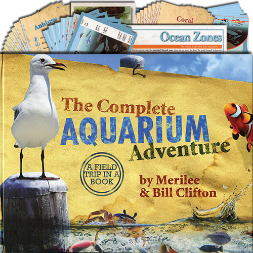 Complete Aquarium Adventure