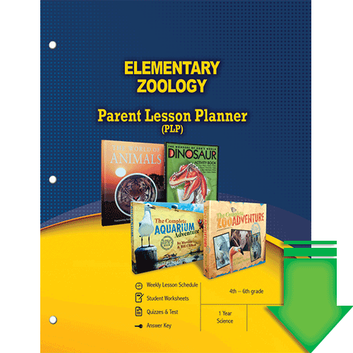 Elementary Zoology (Parent Lesson Planner) eBook (PDF)