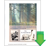 Seminar Workbook in Spanish (Download PDF)