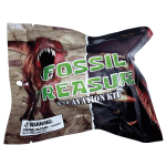 Fossil Treasure Excavation Kit – Dino Fossil