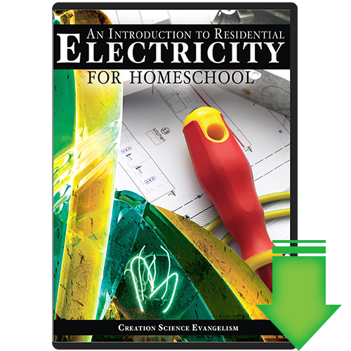An Introduction to Electricity (Video Download)