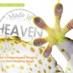 Made in Heaven: Man's Indiscriminate Stealing of God's Amazing Design eBook (PDF)