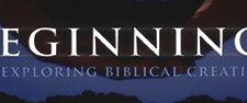 Beginnings - Exploring Biblical Creation & Bible Study Curriculum