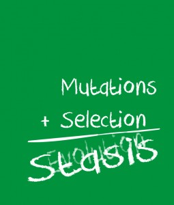 Mutation-Selection-Stasis-255x300