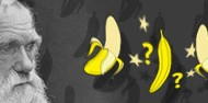QuestionEvolutionDay - banner