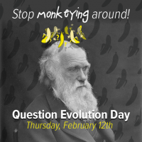 QuestionEvolutionDay
