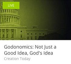 Godonomics-233