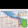 Spanish Longevity Chart