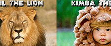 Cecil-vs-Kimba-Featured-Image