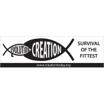 Survival Auto Bumper Sticker