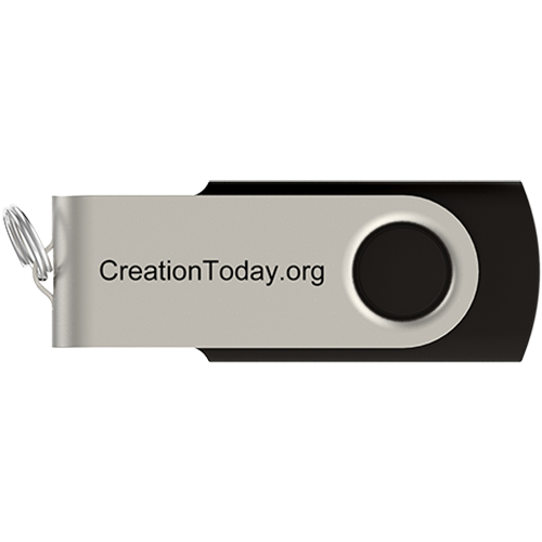 Risen Without a Doubt Flash Drive back