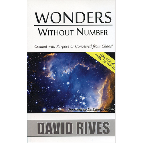 Wonders Without Number