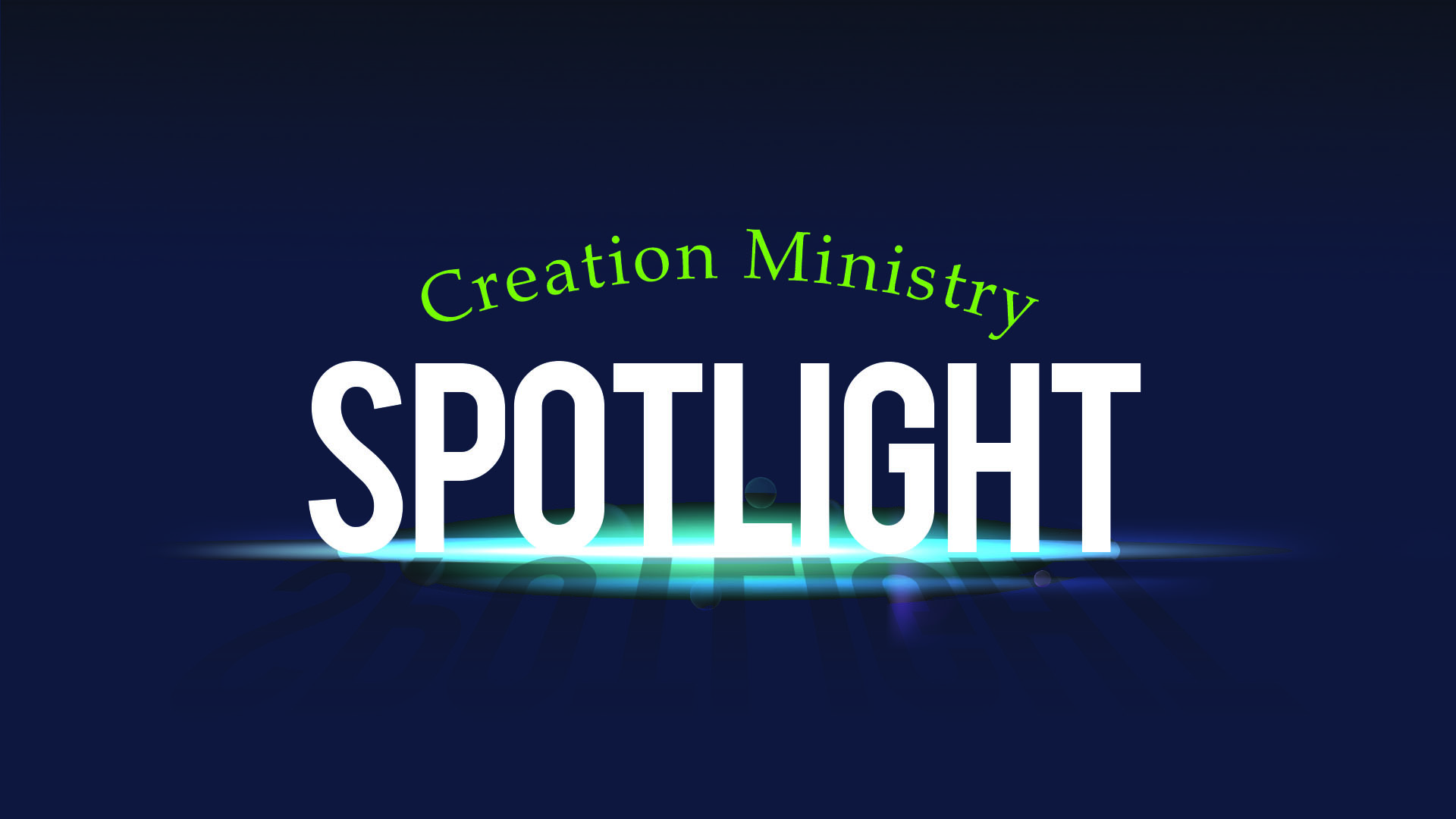 Creation Ministry Spotlight