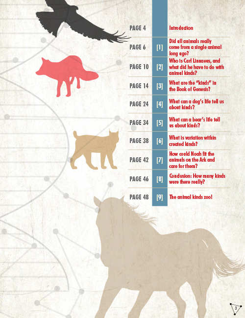 How Many Animals were on the Ark? eBook (PDF)