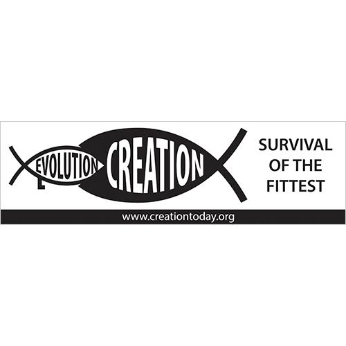 Survival Auto Bumper Sticker