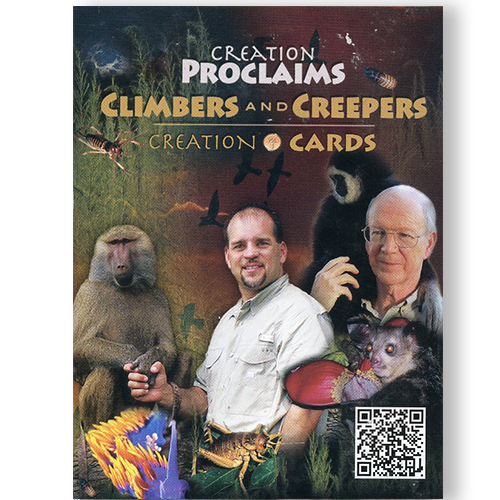 Creation Proclaims: Climbers & Creepers
