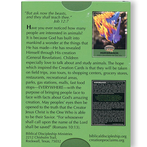 Creation Proclaims: Climbers & Creepers Creation Tract Cards (50 pack) back