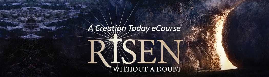 Risen Without A Doubt