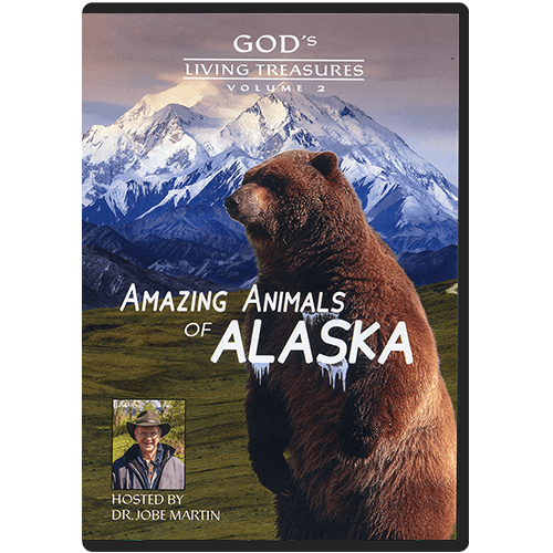 Amazing Animals Part 2 DVD